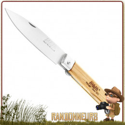 Couteau de poche Pliant bois Olivier lame pointue MAM manche bois d'olivier pour la randonnée